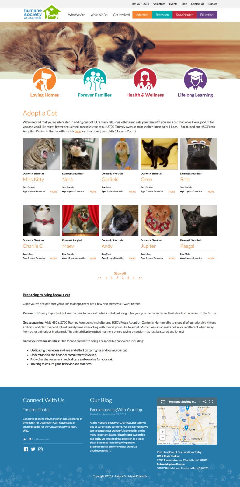 Award Winning Epic Notion Client | Humane Society of Charlotte Website Design and Development